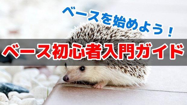 ベース初心者入門ガイド